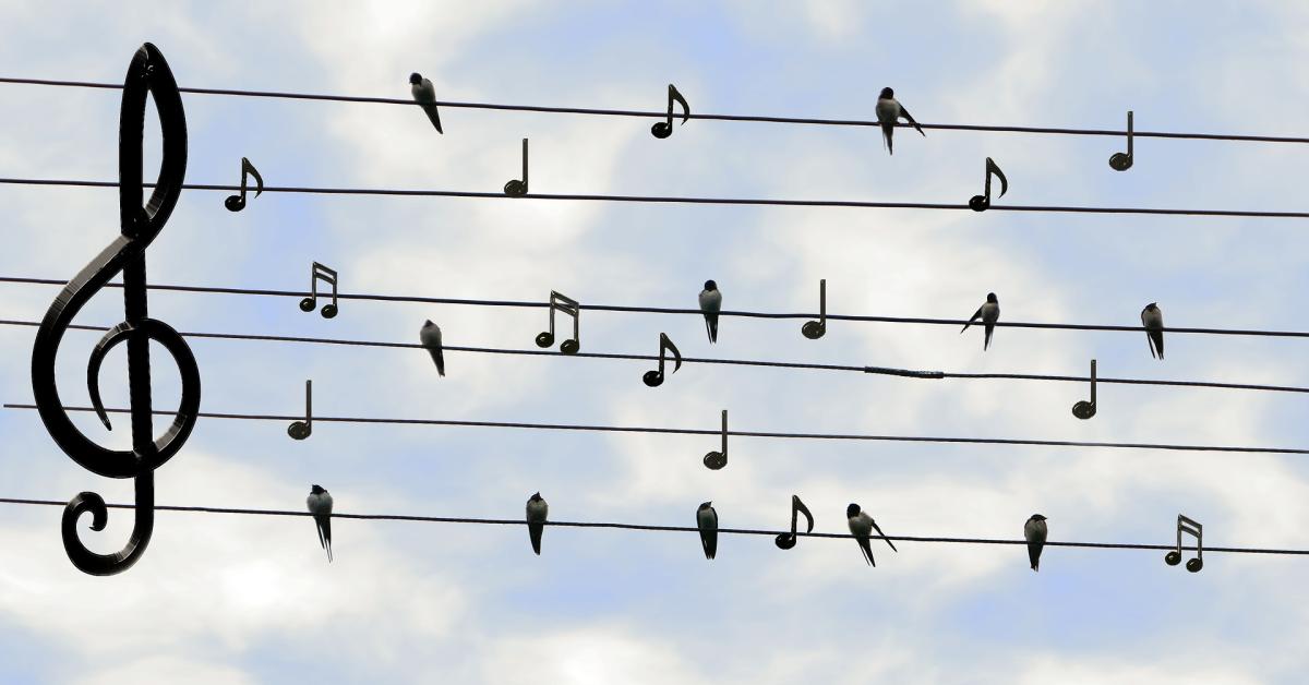 Dołącz do chóru!